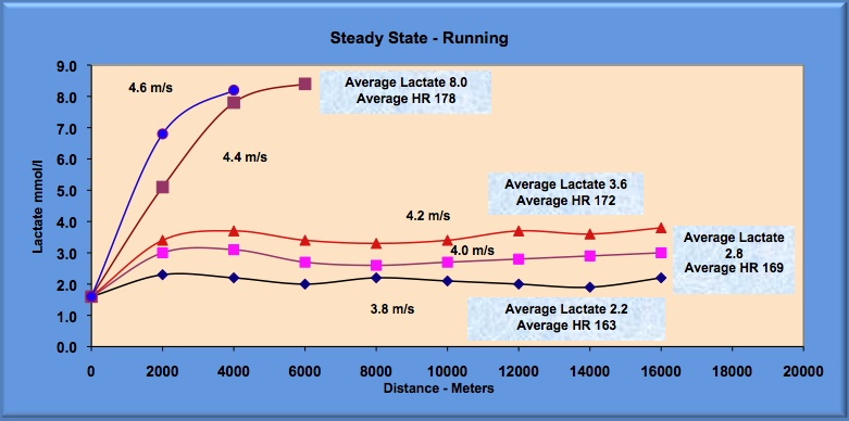steady states runs and lactate levels